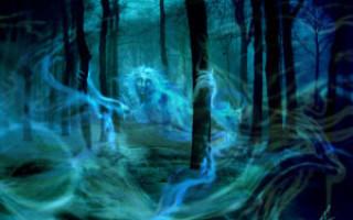 Как вызвать настоящего призрака дома или на улице – проверенные способы, советы