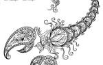 Характер и особенности представителей знака зодиака скорпион