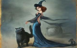 Зачем ведьме нужен кот, как он помогает в магии