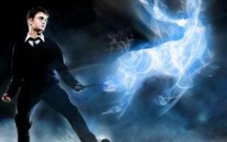 Магия для новичков – легкие заклинания и ритуалы для тренировки навыков