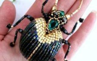 Жук Скарабей – важнейший символ Египта, его значение и место в культуре и мифологии
