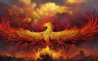 Значение птицы Феникс в легендах и мифологии, версии существования