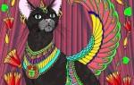 Как вызвать египетского кота желаний – проверенные способы, советы