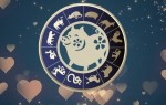 Гороскоп совместимости знаков Лошадь и Свинья по восточному календарю – что ожидать от отношений в таком союзе