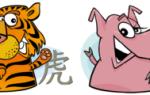 Гороскоп совместимости знаков Тигр и Свинья по восточному календарю – что ожидать от отношений в таком союзе