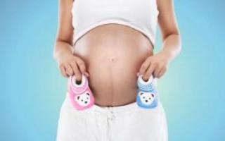 Гадание на количество и пол детей по дате рождения и другие способы с примерами и толкованием
