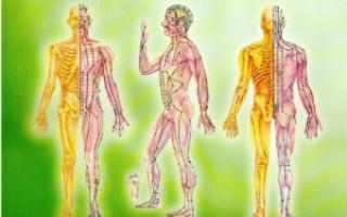 Энергетические меридианы и точки тела человека — что это такое, правила использования