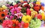 Что означают искусственные цветы во сне – возможные толкования по соннику