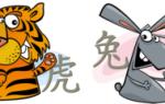 Гороскоп совместимости знаков Тигр и Кролик по восточному календарю – что ожидать от отношений в таком союзе
