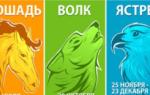 Кельтский гороскоп животных по дате рождения – история, значение и характеристики знаков зодиака
