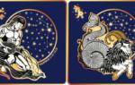 Гороскоп совместимости знаков зодиака водолей и козерог – что ожидать от отношений в таком союзе