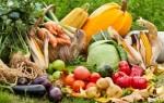Заговоры на урожай — магическая помощь в выращивании различных культур