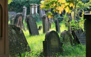 К чему снится кладбище и могилы родственников – толкование согласно соннику и приметам