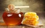 Действенные заговоры на мёд – на любовь, для привлечения клиентов, на хорошую торговлю и другие