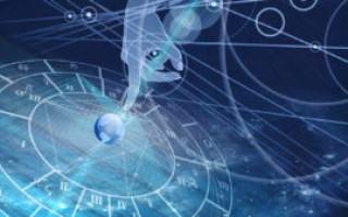 Астрология для начинающих – выбор направления, основные понятия, советы