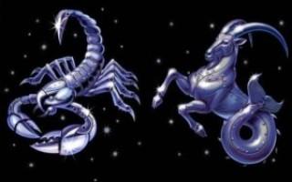 Гороскоп совместимости знаков зодиака Козерог и Скорпион – что ожидать от отношений в таком союзе