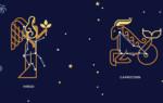 Гороскоп совместимости знаков зодиака Дева и Козерог – что ожидать от отношений в таком союзе