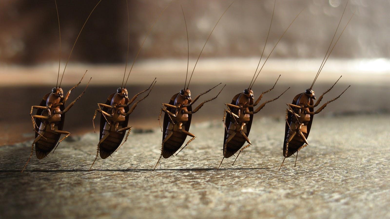 Молитва от тараканов в доме