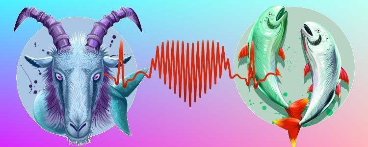 Гороскоп совместимости знаков зодиака козерог и рыбы
